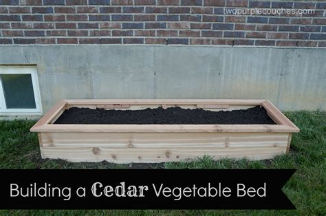 Build A Raised Vegetable Garden Bed How To Build A Cedar Raised Vegetable Bed