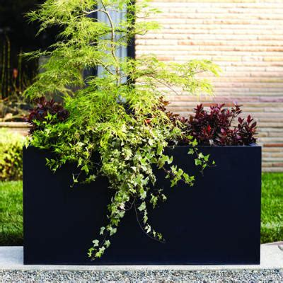 Japanese Container Garden - rectangular container cool container gardens sunset
