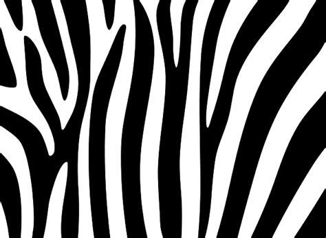 zebra pattern png zebra print png image with transparent background png arts