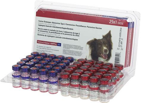 shih tzu vaccine revaccination history vaccines sapphire shih tzu