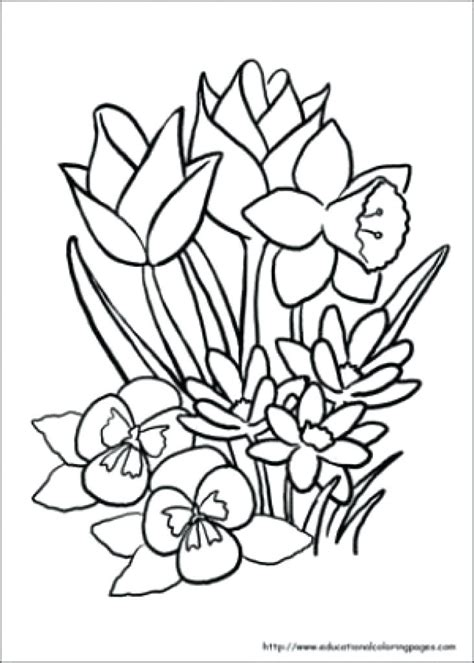 coloring pages for the elderly jovie co