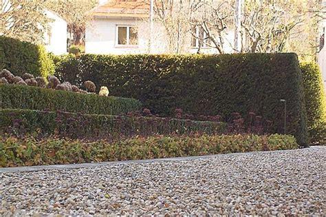japanische gärten bildergalerie formschnitt gartengestaltung korneuburg mistelbach wien
