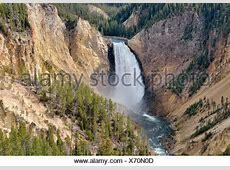 Lower Falls, Blick vom Aussichtspunkt, Grand Canyon des ... Yellowstone Park Naturschutz