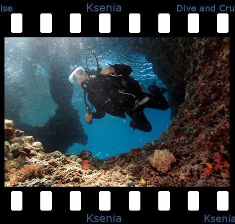 dive russe l 201 quipe dive and cruise