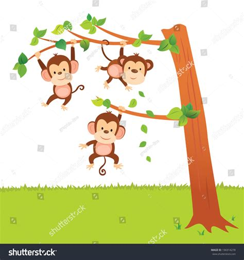 3 little monkeys swinging in a tree monkeys swinging tree little monkeys have stock vector