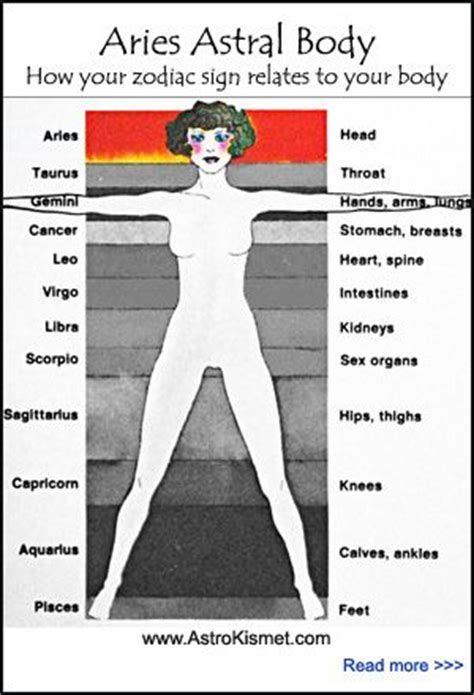 public area in body parts 7 best images about aries horoscopes love romance sex