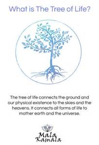 Tree Meanings Best 20 Tree Of Life Meaning Ideas On Pinterest