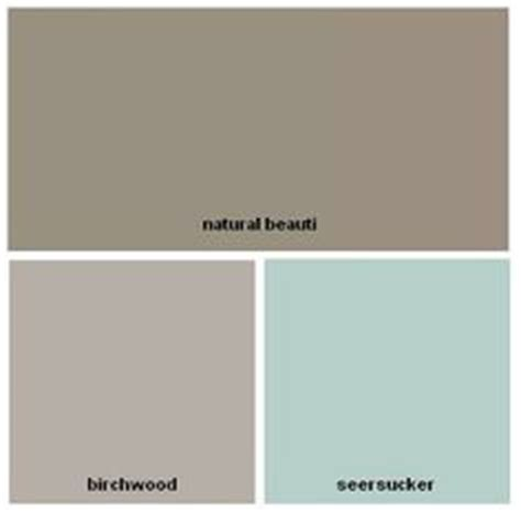 revere pewter greige color palettes brown hairs