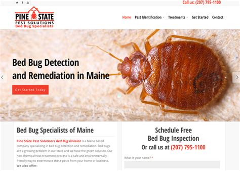 bed bug website pest control website design wordpress website designer