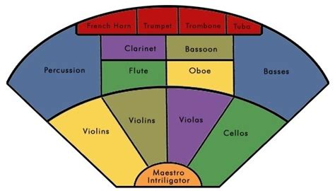 orchestra sections what are all the instrument sections used in an orchestra