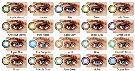 genetics eye color all about the human eye color chart