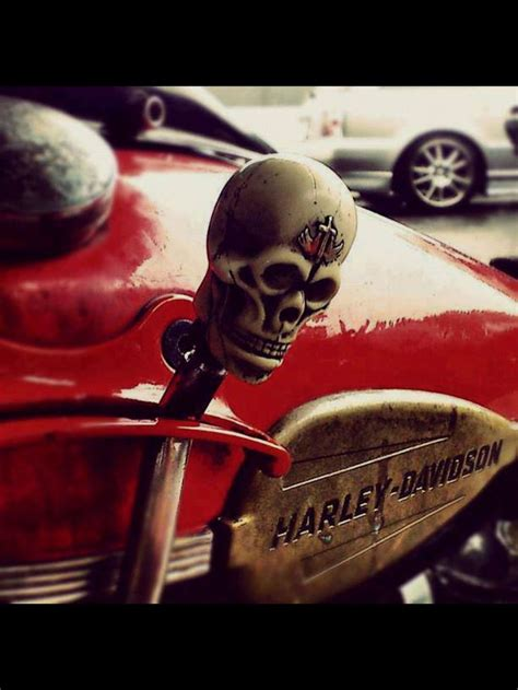 Badass Shift Knobs by 15 Best Images About Jockey Shift On