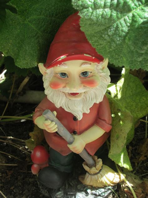 garden gnomes anyone 1017 best images about gardens on pinterest gardens