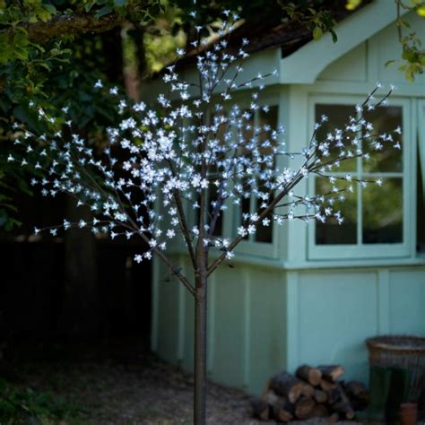 christmas lights our pick of the best blossom trees