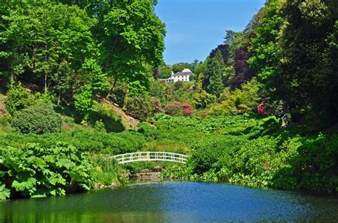 Garden Cornwall Trebah Gardens Bassets Acre