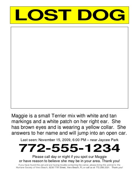missing flyer template missing pet poster template www imgkid the image