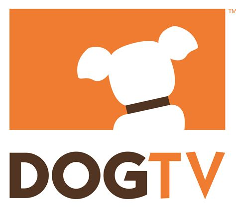 puppy tv dogtv nominated for dogtime s 2012 pet awards