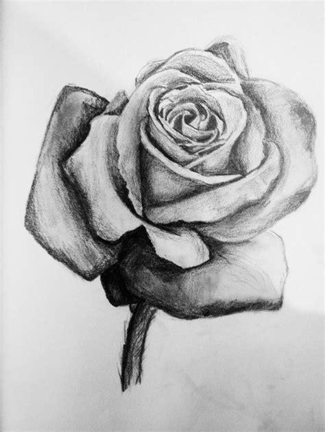 rose sketch by j s s on deviantart
