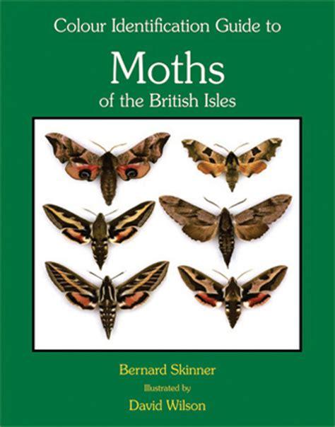 the of the moths books moths books