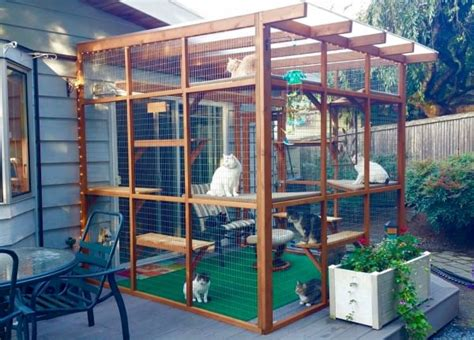 free diy catio plans catios can be built in three hours or less and let your cats enjoy the outdoors safely fetch