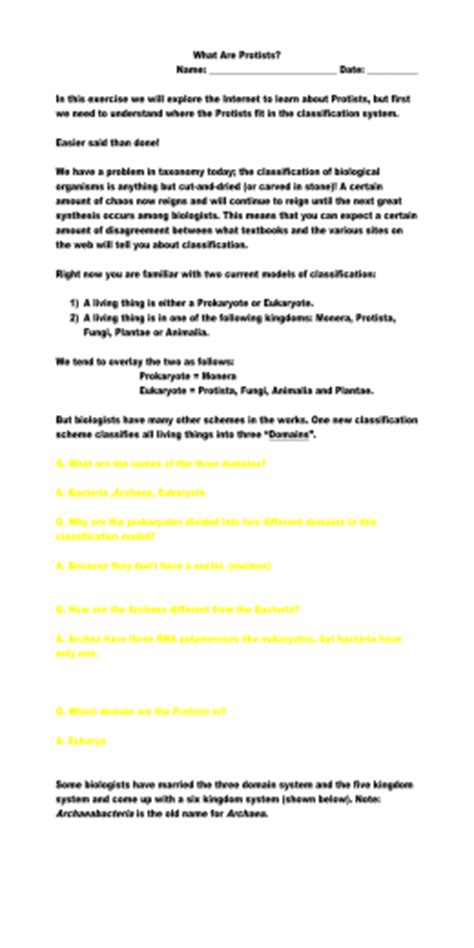 section 20 1 the kingdom protista answers protist worksheet wiildcreative