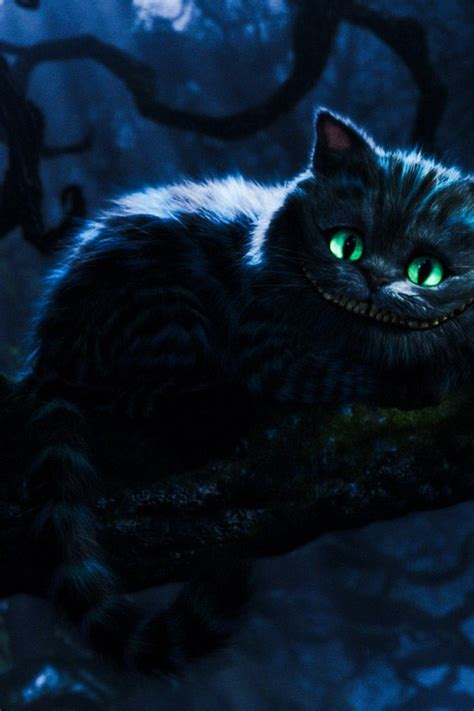 cheshire cat wallpaper android cheshire cat wallpaper iphone wallpapersafari