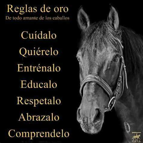 los amantes de todos 8420473561 de todo amante de los caballos frases vaqueras los caballos amantes y caballos