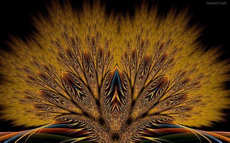 imagenes abstractas para windows 7 imagenes abstractas de animales fondos moviles gratis en