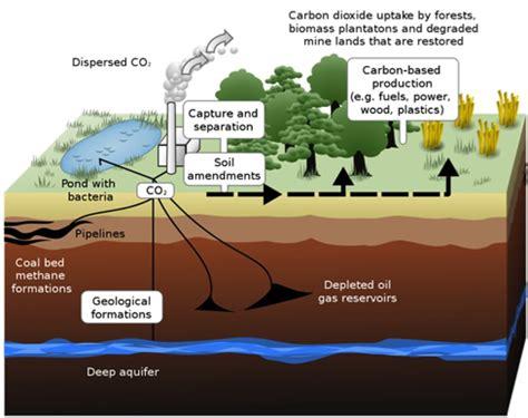 consequences of being sectioned eth klimablog grundwasser als co endlager