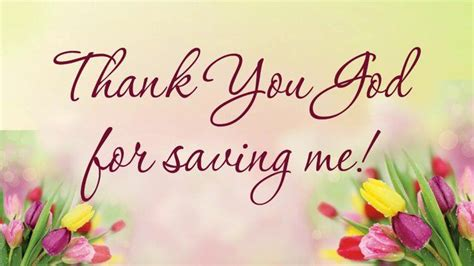 Stin Up Thank You Cards 17 best images about thank you on bee