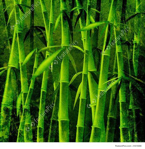 bamboo trees illustration
