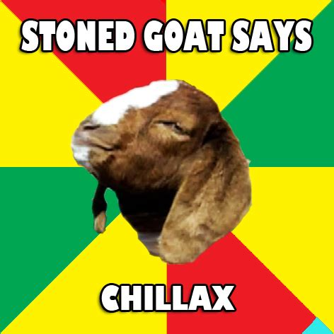 Stoned Meme - stoned goat memes