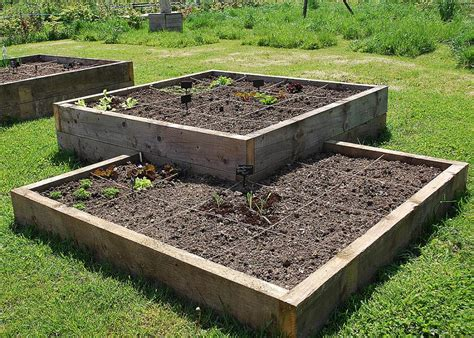 square vegetable garden square foot gardening keyhole beds the garden deli