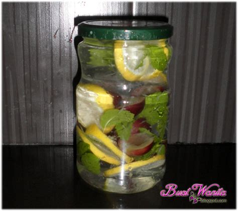 cara membuat infused water buah lemon experiment buat air detox buah fruit infused water buat