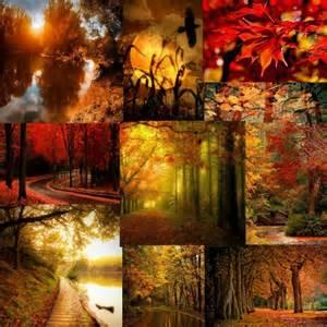 autumn color rainbow your world autumn color palette