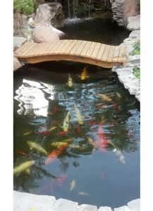 backyard pond builders koi pond with bridge pacific ponds and design