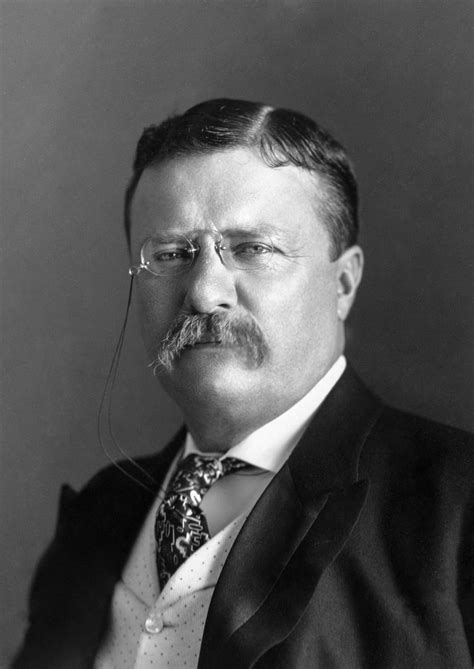 Presidency Of Theodore Roosevelt Wikipedia The Free | theodore roosevelt wikipedia