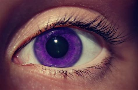 purple eye contacts   www.pixshark.com images galleries