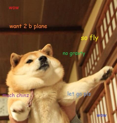 Doge Meme Best - doge meme the best of doge