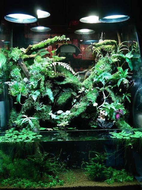 aqua terrarium designs aqua terrarium shop plantston plants ton garden beautiful terrarium shop and shops