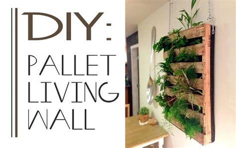 grow  plants indoors follow   diy vertical