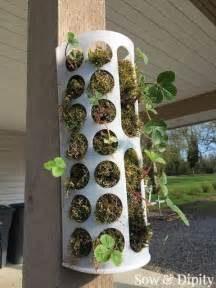 repurposed ikea basket to strawberry planter gardens