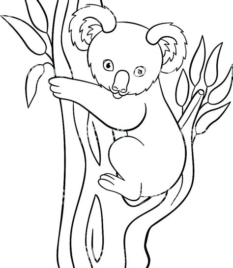 koala ballet coloring pages koala coloring pages koala bear coloring page coloring