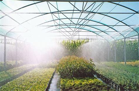 nebulizzatore da terrazzo nebulizzatori attrezzi giardino caratteristiche dei