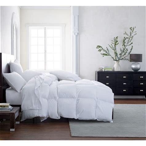 scandia down comforter scandia down vienna polish white goose down comforter