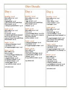 Day diet menu best diet solutions program