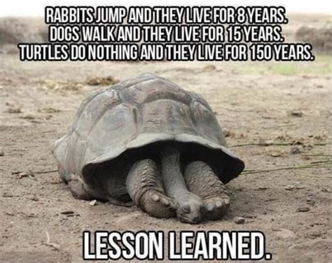 Funny Life Memes - funny best lesson of my life jokes funny pictures meme jpg