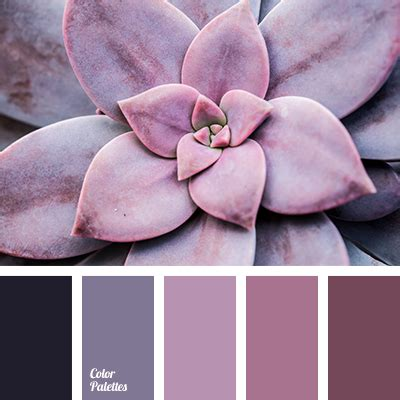 what does paint to match blueberry color color palette ideas