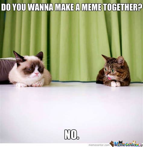 Lil Bub Meme - lil bub memes best collection of funny lil bub pictures