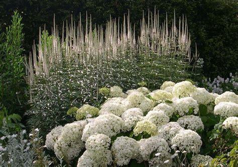 sissinghurst castle white garden moon garden white